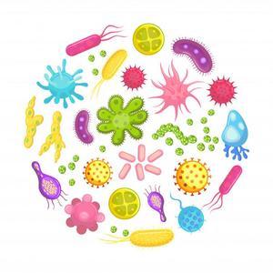 Уничтожение бактерий и микроорганизмов